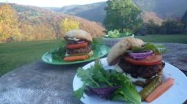 Organic Hamburgers